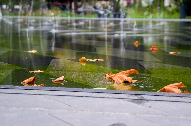 Le mirroir d'eau à Nantes avec quelques feuilles oranges et marrons
